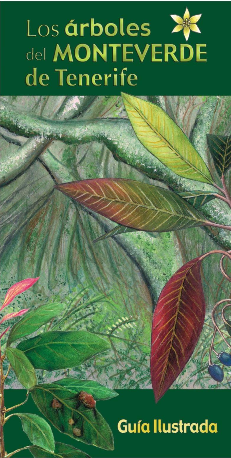 Árboles del Monteverde