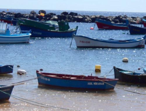 El Ayuntamiento de Santa Cruz de Tenerife destina 60.000 euros para la Cofradía de Pescadores de San Andrés