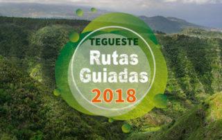 Rutas Guiadas Tegueste 2018