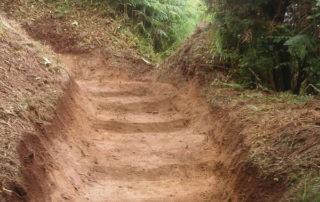 Los colectivos de Anaga agradecen la limpieza de los senderos en el Parque Rural