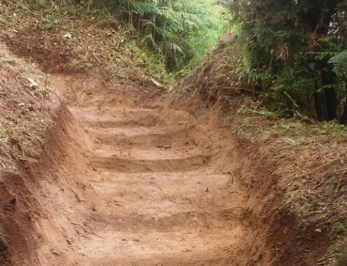 Cierre temporal de un tramo del Sendero PR-TF4 entre el Mirador de Amogoje y El Bailadero