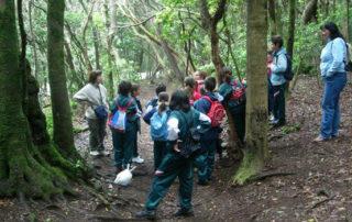 El Cabildo fomenta los valores naturales del Parque Rural de Anaga entre 1.800 escolares