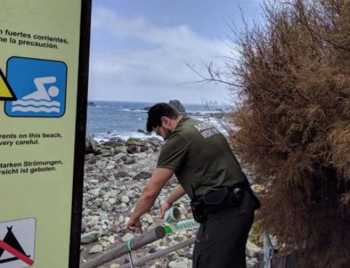 La UMEN precinta el muelle del Roque de las Bodegas ante el riesgo de derrumbe