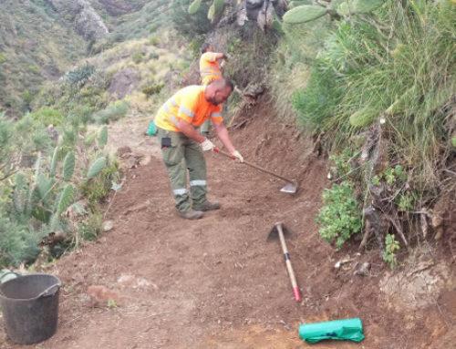 El Cabildo refuerza el personal destinado a garantizar el mantenimiento del Parque Rural de Anaga