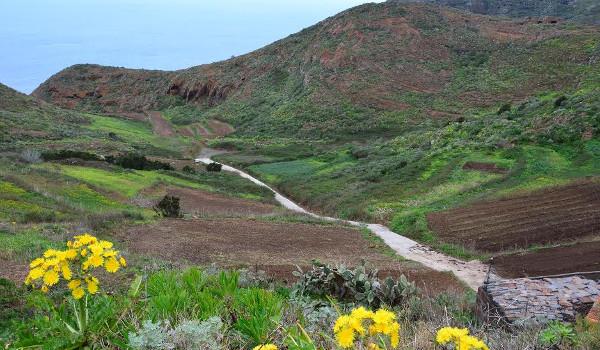 Finalizan los trabajos de mejora del camino agrícola de Charco Hondo