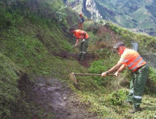 El Cabildo de Tenerife invertirá más de 464.000 euros en el mantenimiento del Parque Rural de Anaga