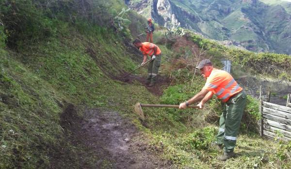 El Cabildo invertirá más de 464.000 euros en el mantenimiento del Parque Rural de Anaga