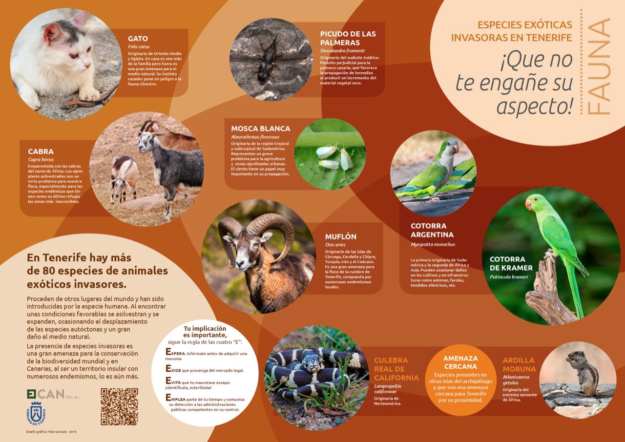 Especies Exóticas Invasoras - Fauna