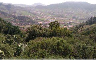 Abierto el periodo de preinscripción para la Ruta Monteverde El Ciclo del Agua