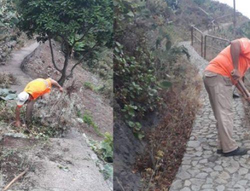 Santa Cruz ejecuta un programa de limpieza en diferentes núcleos del Distrito Anaga