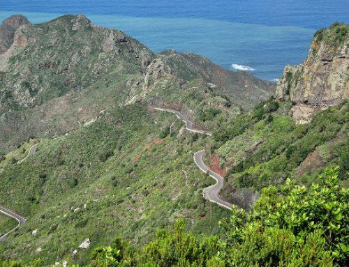 El Cabildo invierte 112.000 euros para mantener la Reserva de la Biosfera de Anaga
