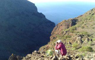 El Cabildo recuerda a la población la necesidad de respetar los espacios naturales
