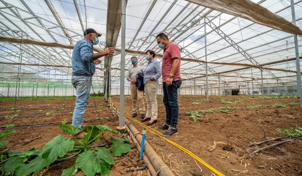 El Cabildo mejorará los sistemas de regadío del municipio de Tegueste