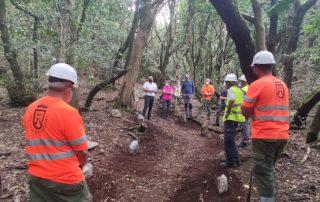 El Cabildo y Gesplan facilitan la realización de prácticas formativas en materia medioambiental en Anaga
