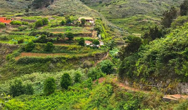 El Cabildo invierte 1,5 millones en la apertura de la pista agrícola de El Batán de Arriba